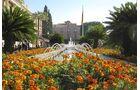 Costa Cálida Blumen