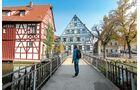 Forchheim hat nicht nur schöne Fachwerkhäuser, sondern auch einen riesigen Biergarten.