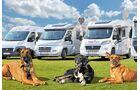 Spezialisierte Vermieter ermöglichen den Reisemobilurlaub mit Hund.
